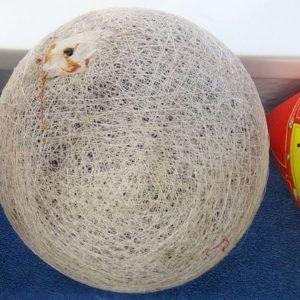 Ballblase eines Fußballs